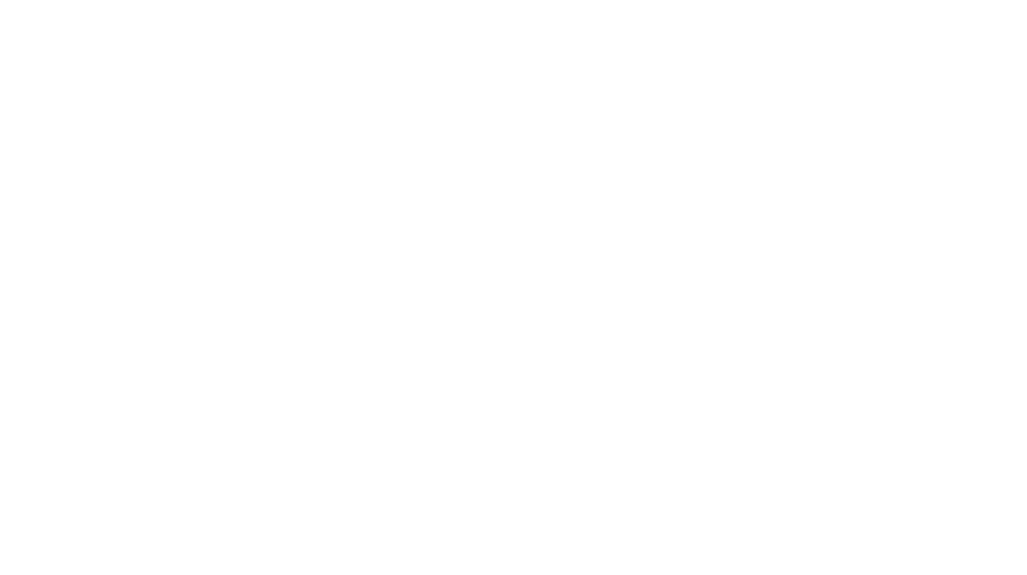 WOB Logo white